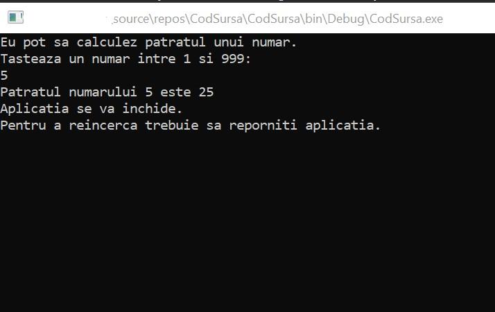 rezultatul executiei codului sursa, codul masina - invatam programare